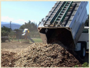 wood chip from backtoeden