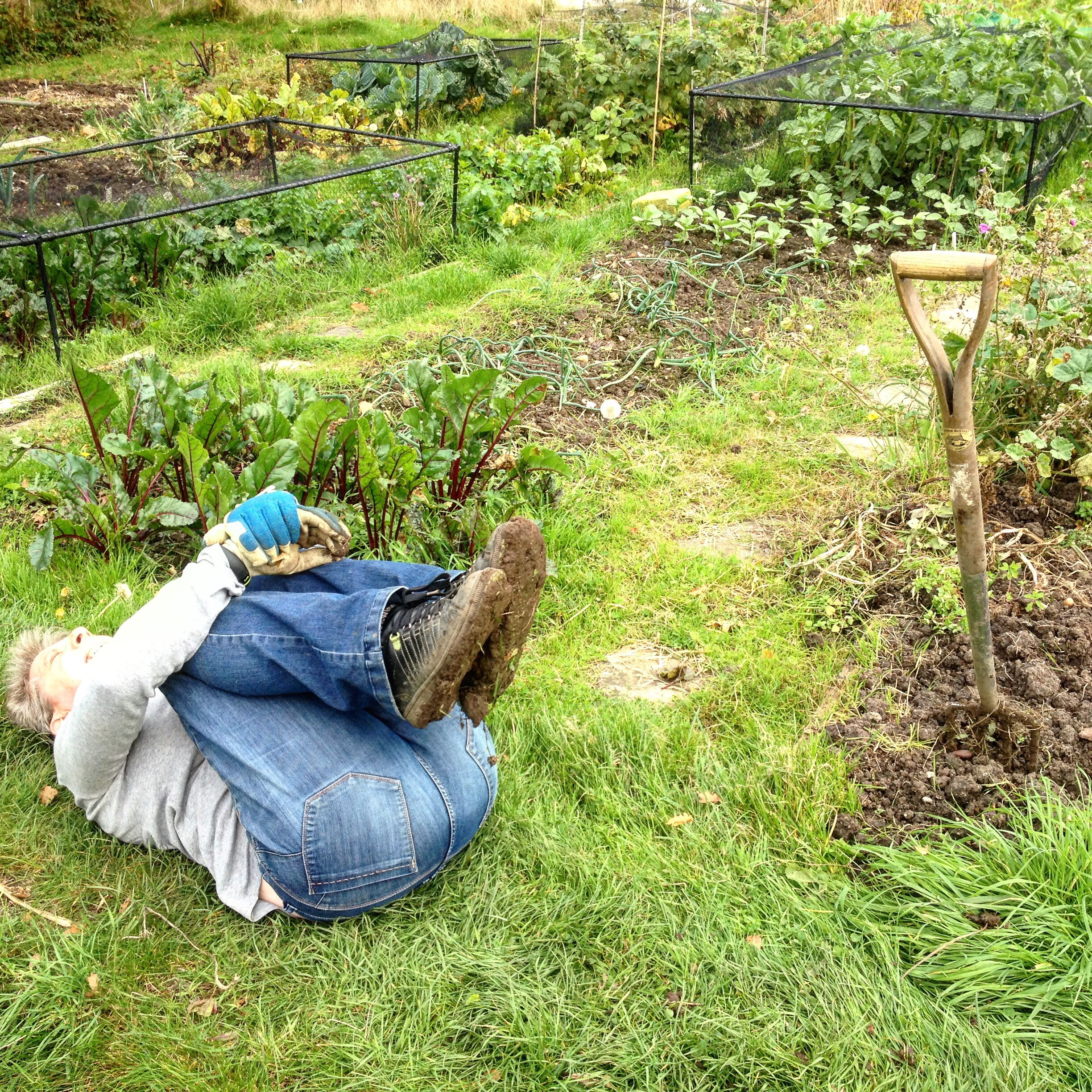 Allotment Yoga